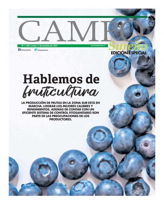 http://somosespeciales.cl/2021/10/12/campo-sureno-11-de-octubre-de-2021/